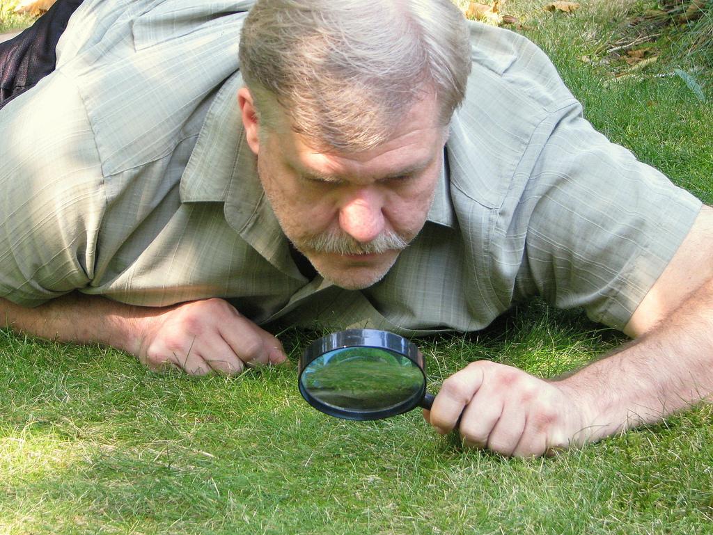 watching-grass-grow