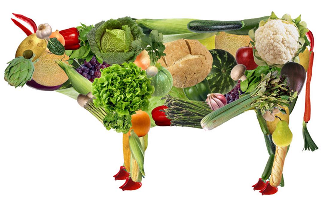 Por que as dietas vegetarianas estão ficando mais populares?