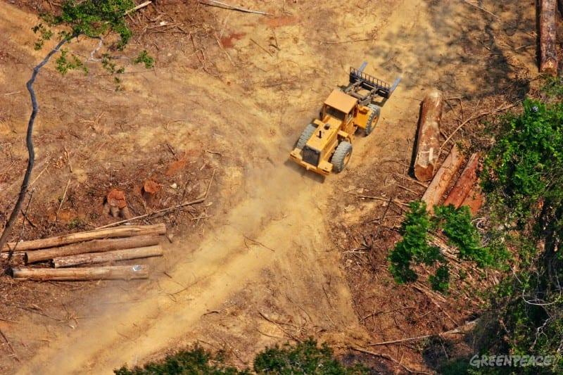 O contexto ambiental no Brasil e a COP 23