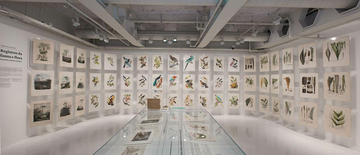 Quadros de um país – exposição no Itaú Cultural retrata a história do Brasil