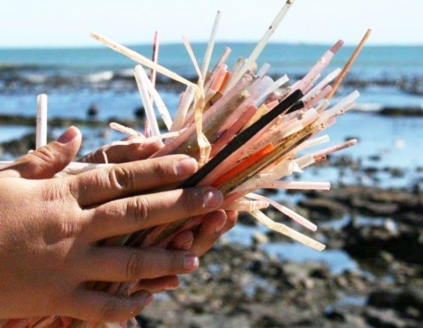 Canudos de plástico: alternativas que nos pouparão 500 anos