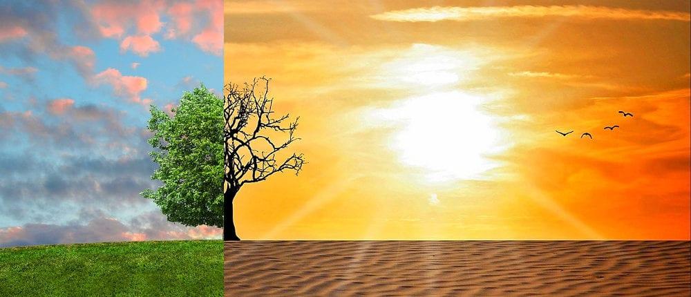 Onda de calor gera debate sobre mudanças climáticas