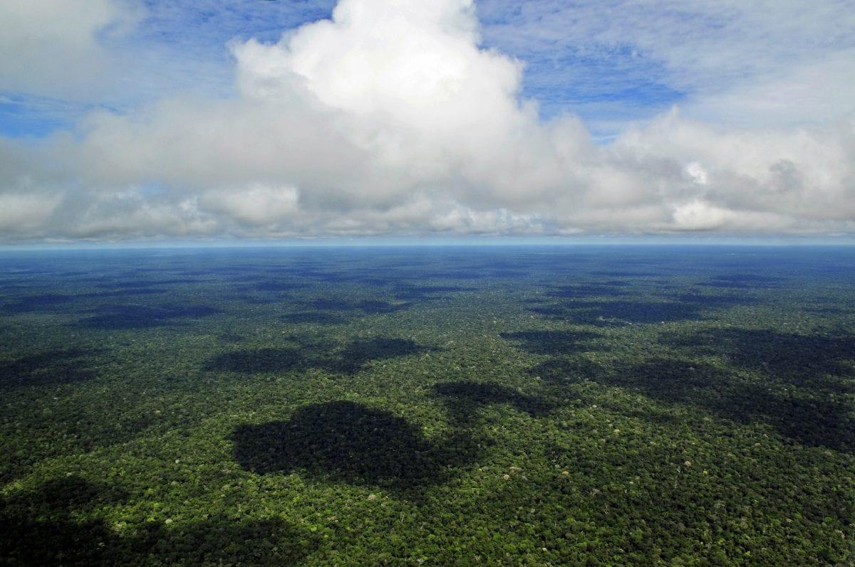 Mudança Climática: a COP 23 e o que esperar da COP 24