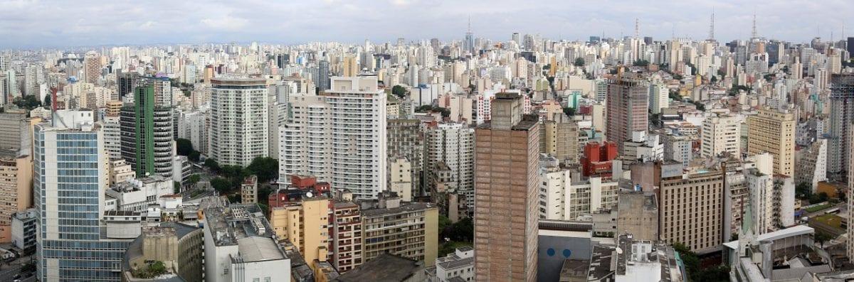 São Paulo: a Arborização Escassa e Desigual da Cidade
