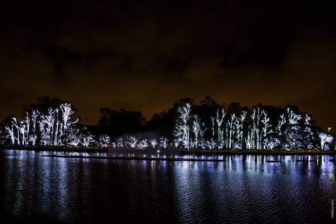 São Paulo: Corais Natalinos se apresentam em palco flutuante no Ibirapuera