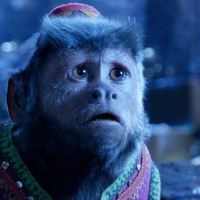 macaco aladdin