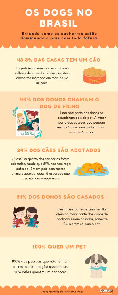 Gráfico laranja sobre cachorros no Brasil