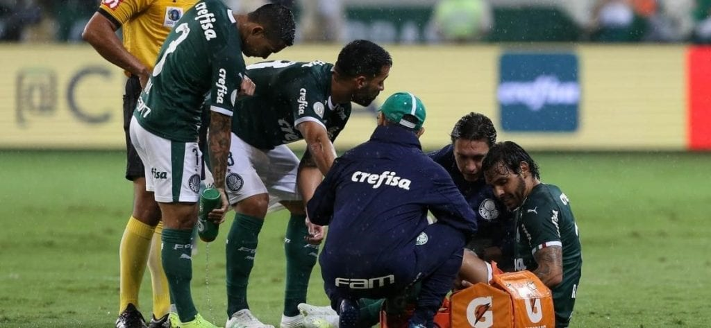 Ricardo Goulart em ação pelo Palmeiras