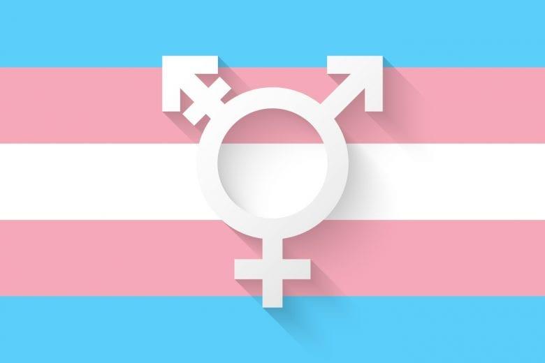 projeto de lei que inclui mulheres trans na proteção da Lei Maria da Penha