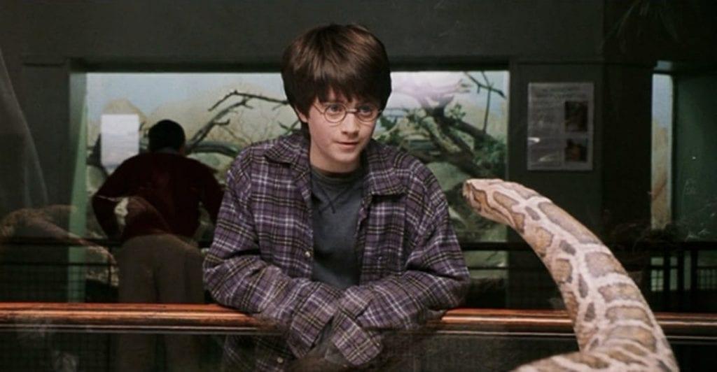 harry potter zoologico
