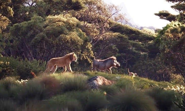 rei leão hakuna matata