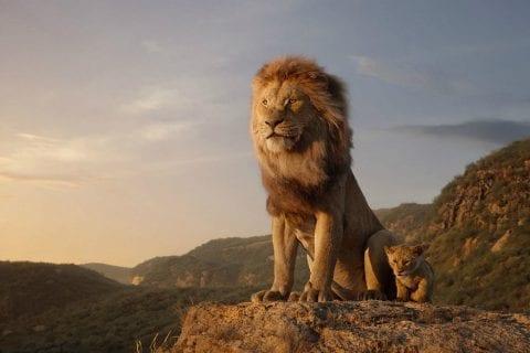 Estreia rei leão