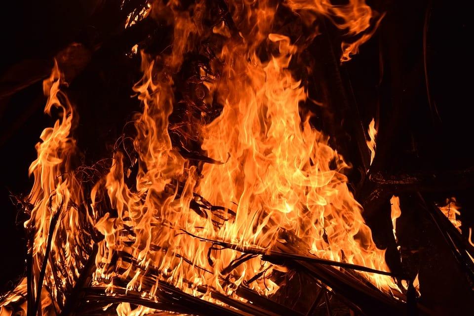 O que não te contaram sobre as queimadas