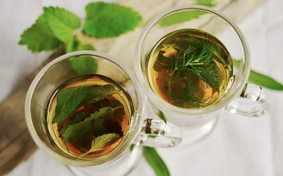 Chá verde: refrescante e saudável
