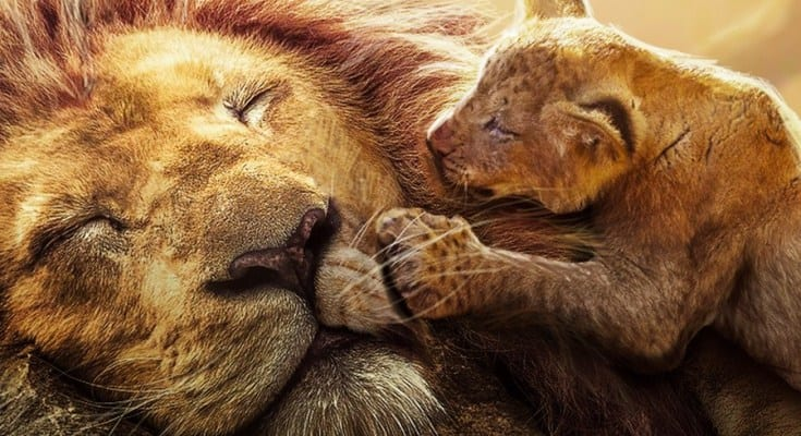 O Rei Leão e a Teoria da Cosmovisão