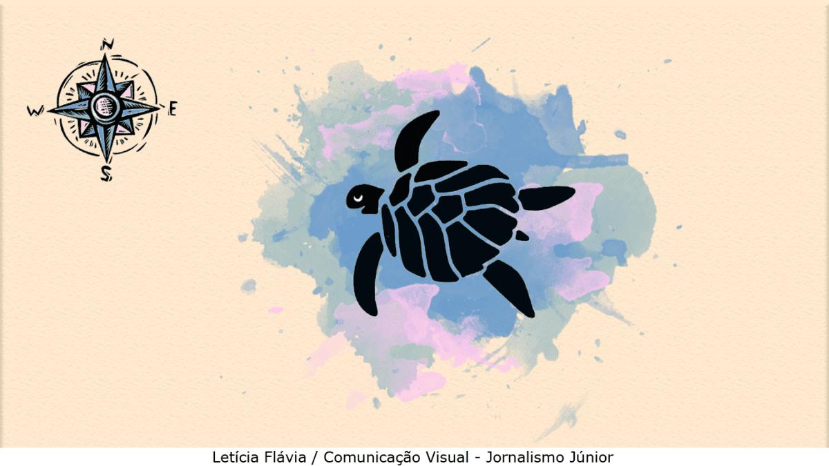Tartarugas: ciclo de vida e geomagnetismo