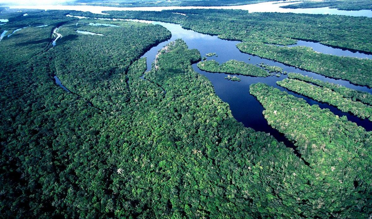 5 de setembro, o dia da Amazônia