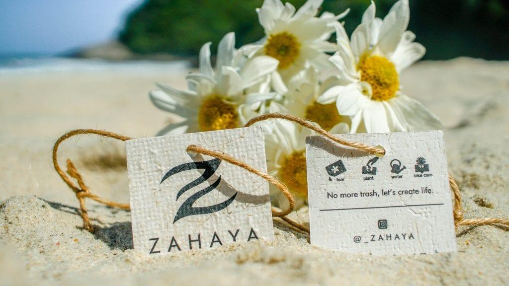 Tags Zahaya, após introduzidas em terra cultivável, tornam-se lindas margaridas, devolvendo vida para a natureza