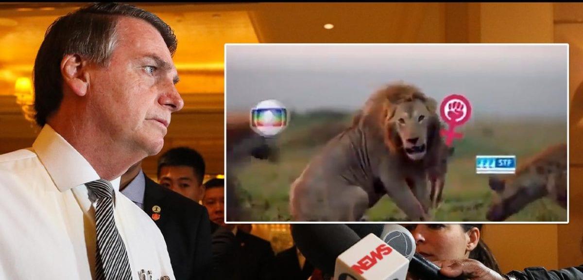 Bolsonaro apaga Tweet em que compara PT e feministas com hienas