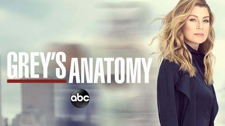 Grey's Anatomy: Saiba tudo sobre o último episódio do ano