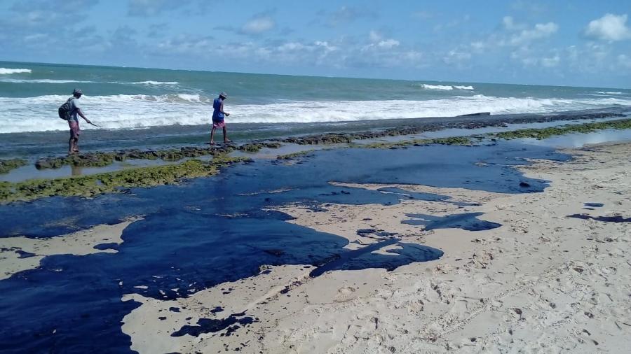 Alunos da EMECE apresentam ideias para tirar óleo das praias