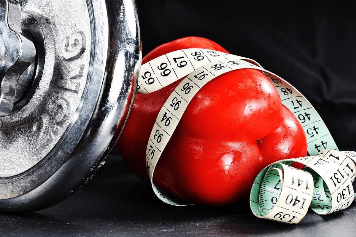 Emagrecer 10kg com 500 receitas