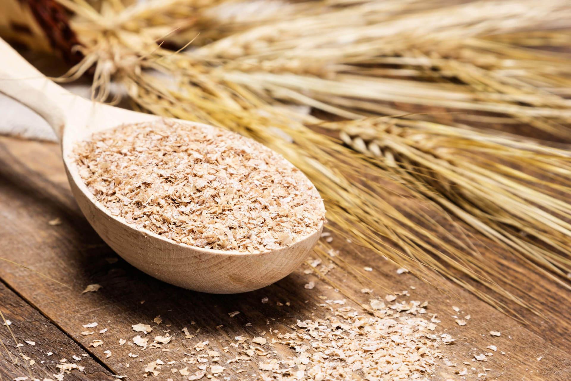 O gérmen de trigo é um dos aliados no café da manhã para emagrecer.