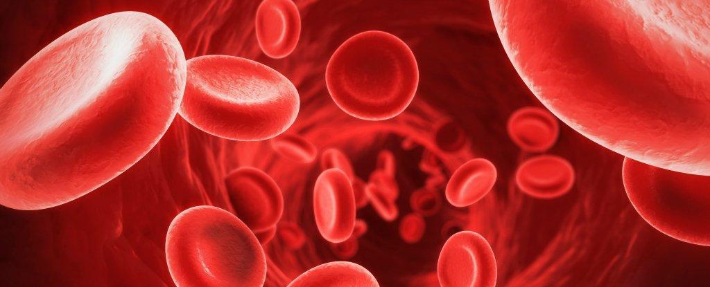 Coronavírus: Sangue tipo A é mais suscetível a contrair a doença