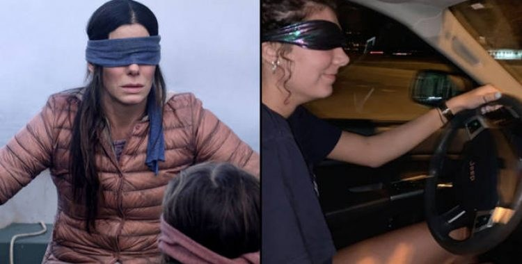 desafio bird box