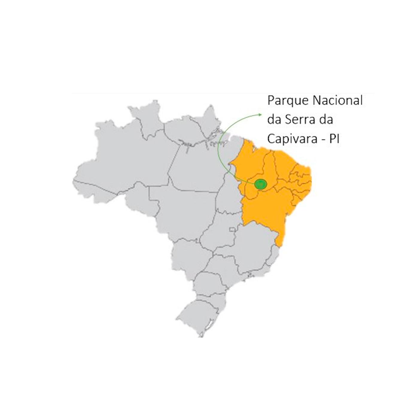 onde fica o parque nacional da serra da capivara