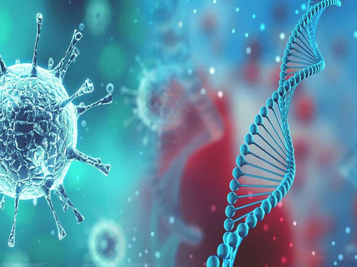 coronavírus avança com descaso da quarentena