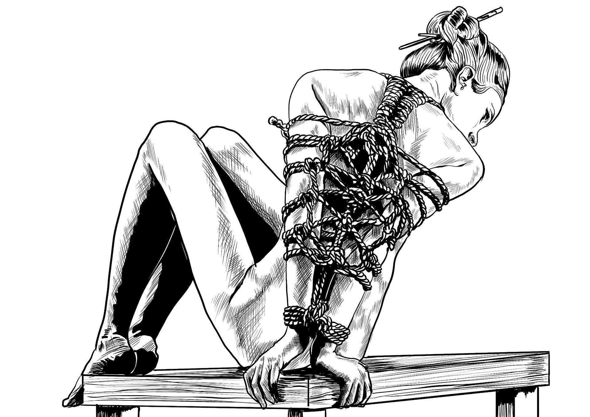 Como surgiu o Shibari?