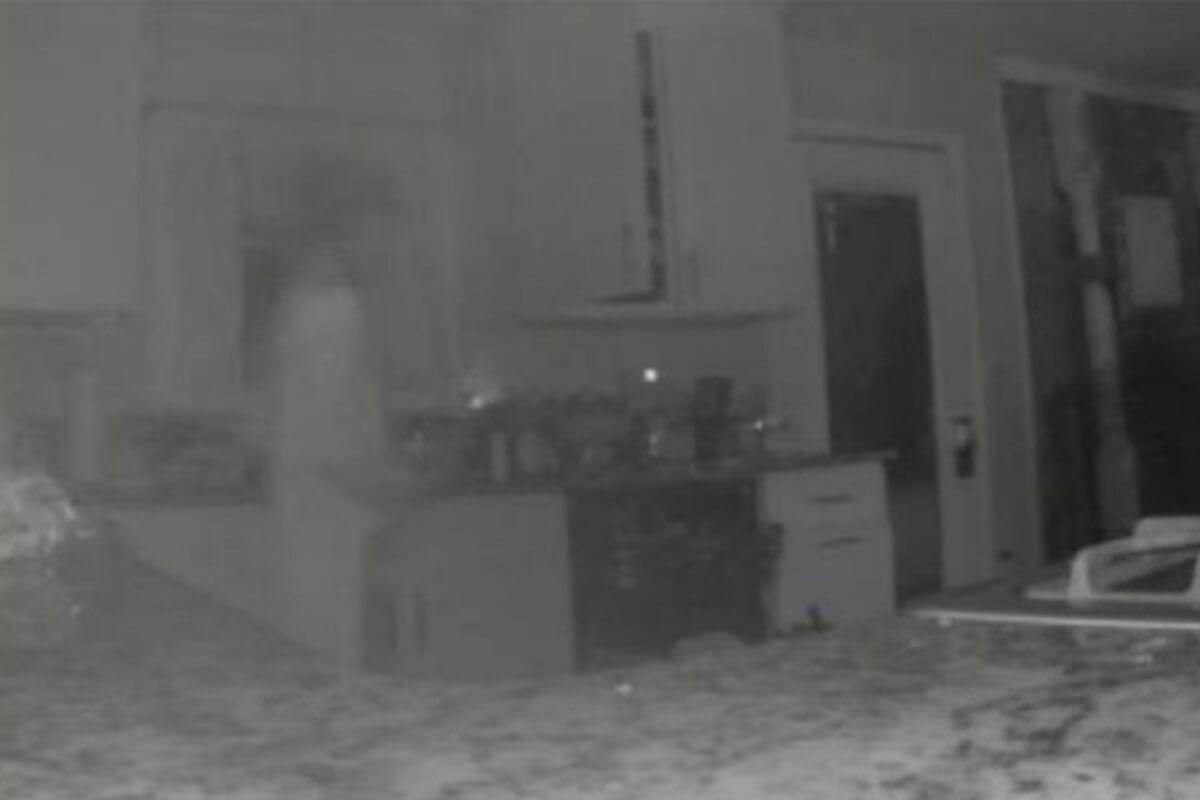 Mama não é mito: Mulher Fantasma assombra tarde de família na Califórnia