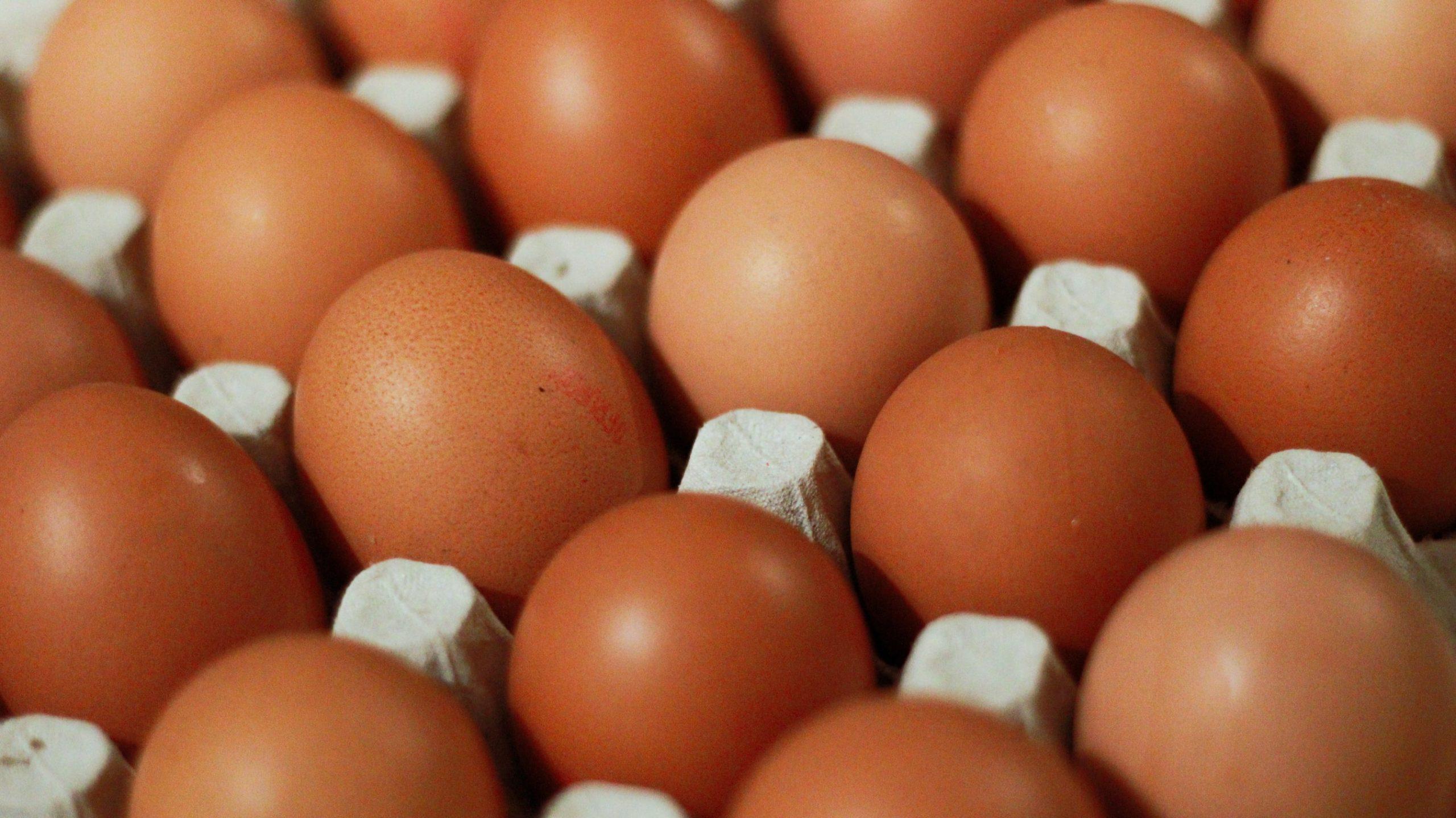 Proteína: uma forma de inovar o preparo do ovo