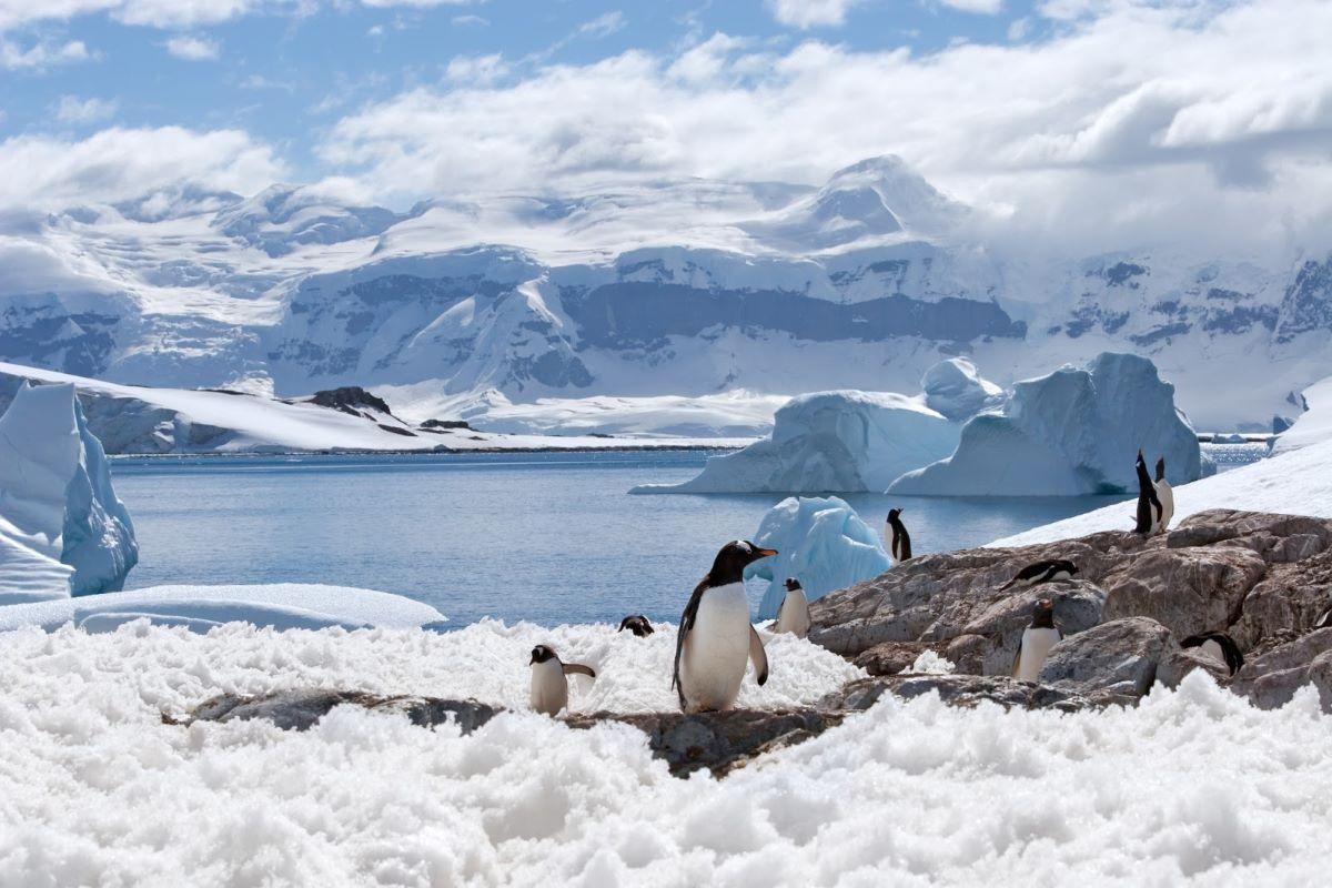 Degelo das calotas polares
