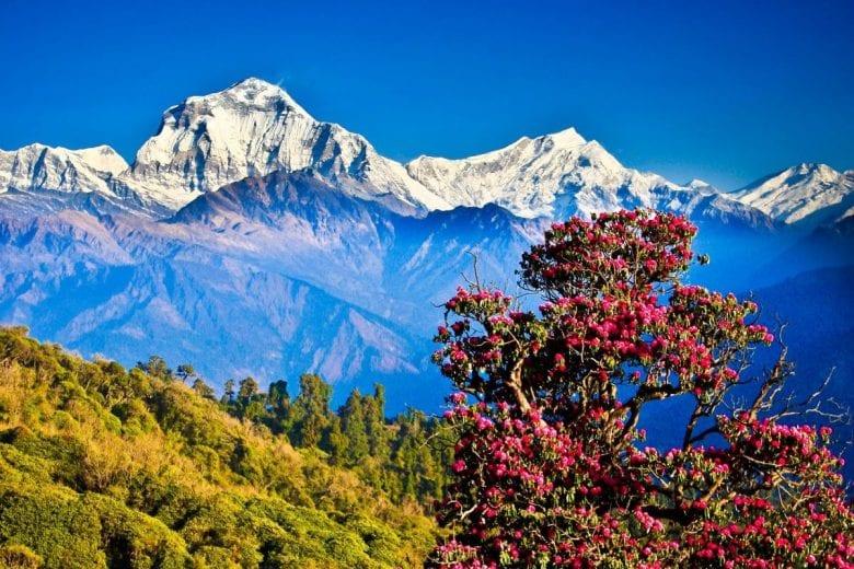 por que conhecer o Nepal