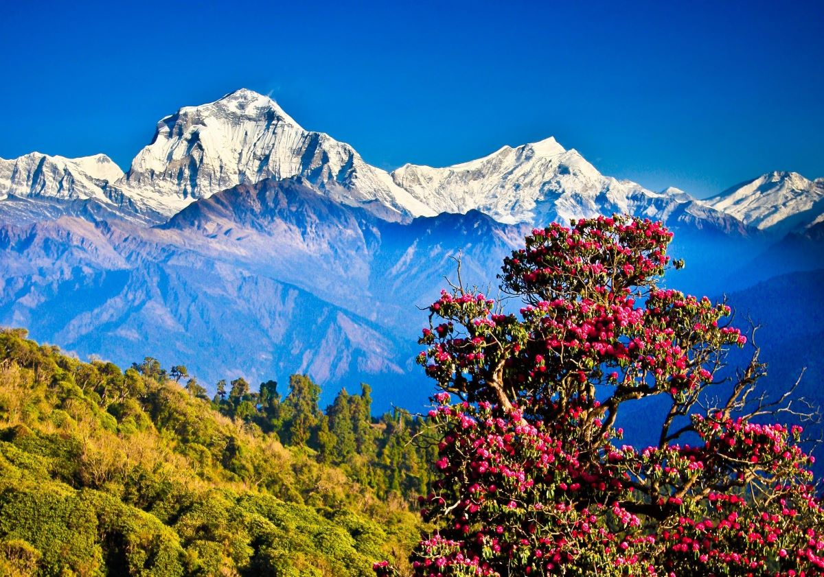 Conheça 5 pontos turísticos do Nepal, além dos Himalaias
