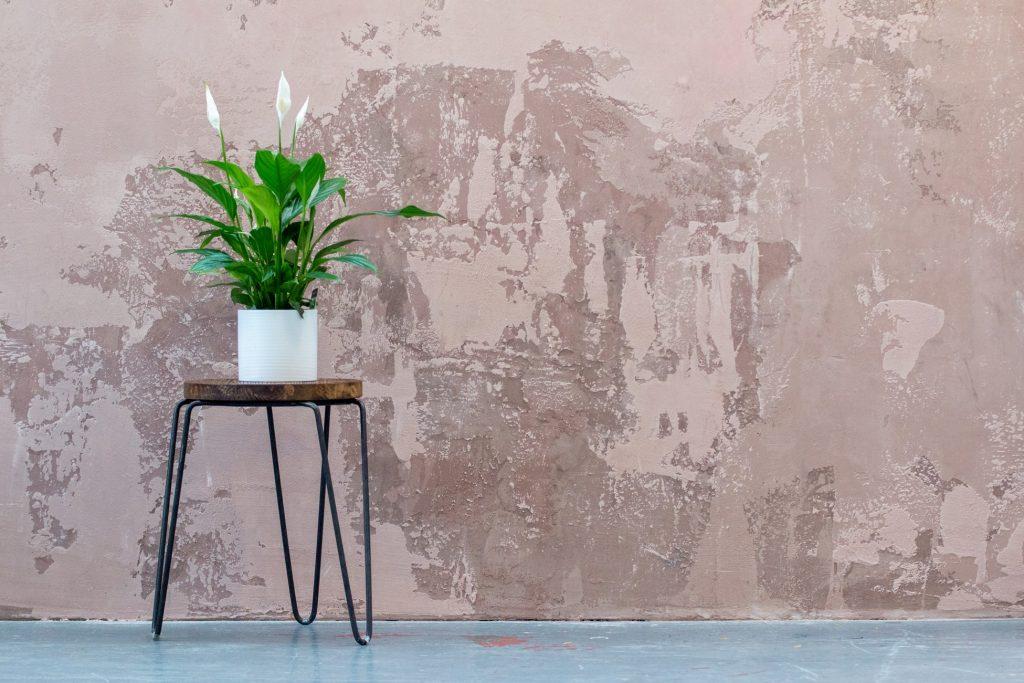 Decoração: saiba como personalizar a sua parede