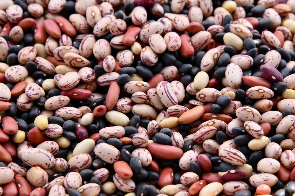 Proteína vegetal: confira 3 opções!