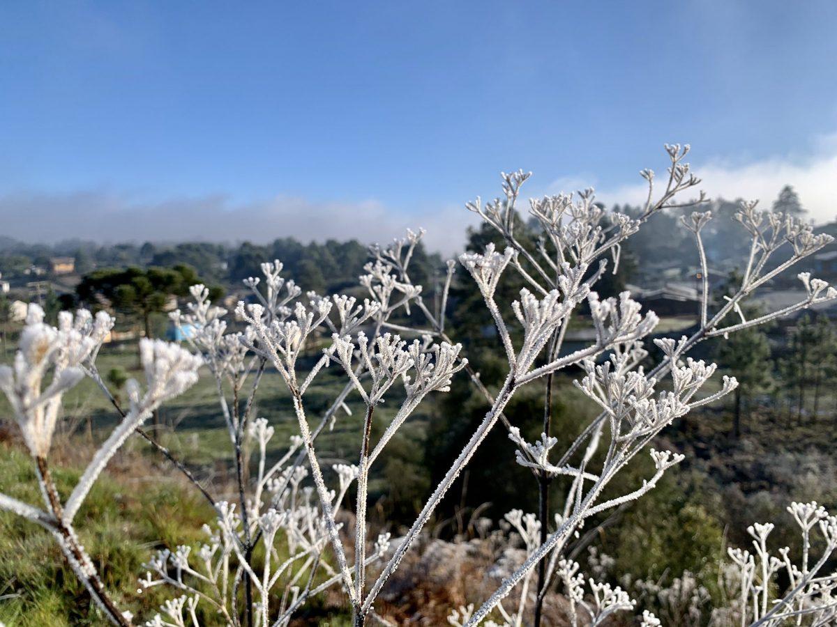 Neve no sul do Brasil: as temperaturas abaixo de 0° Celsius