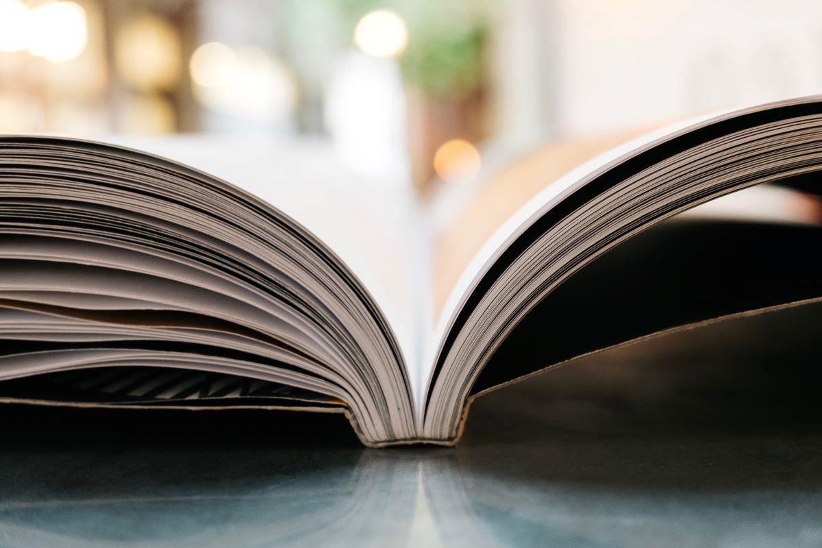 Veja 5 escritoras que todos deveriam conhecer