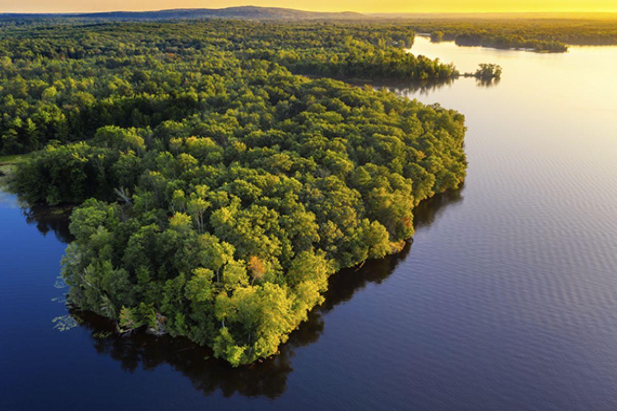 Amazônia – Conheça a maior reserva natural do planeta