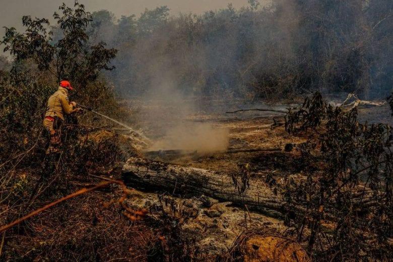 Pantanal queimadas
