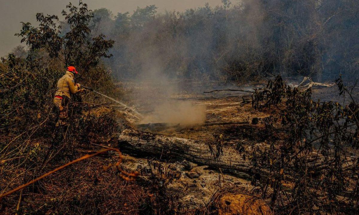 Os efeitos e a origem do fogo que consome o Pantanal
