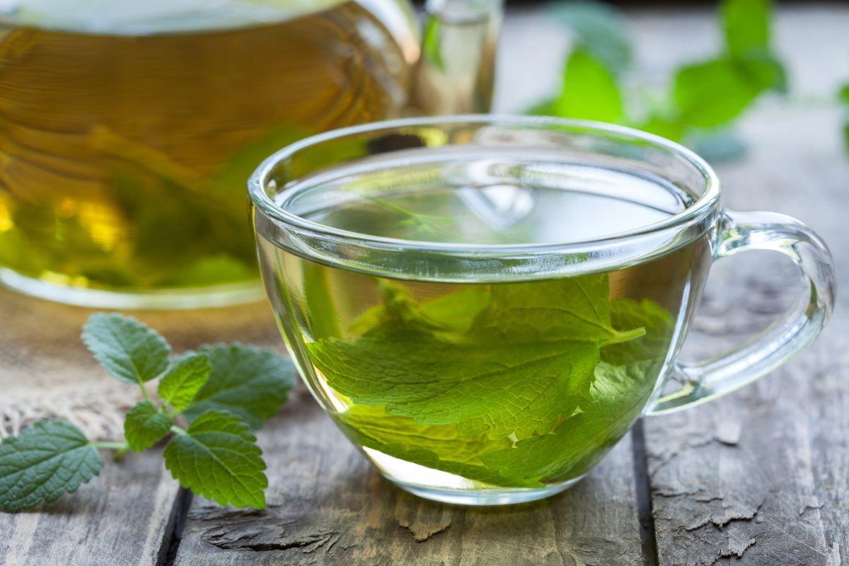 Como o consumo de alguns chás regularmente pode melhorar sua saúde