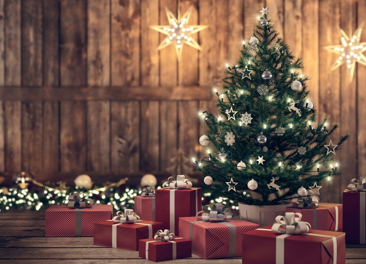Natal: conheça a origem da árvore, que é um símbolo da data