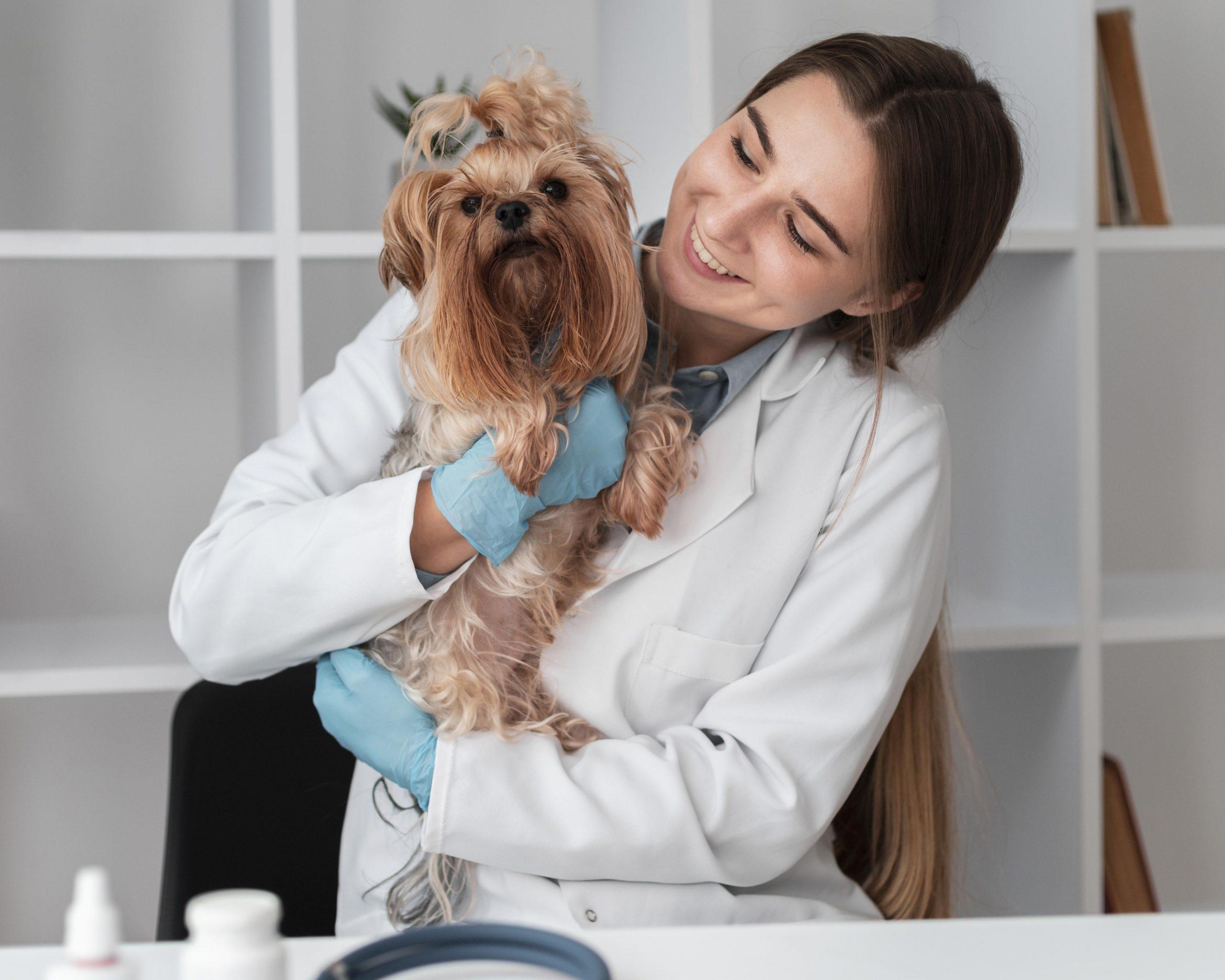 faculdade de veterinaria