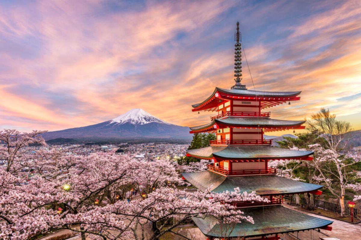 Japão: Descubra algumas curiosidades sobre a Terra do Sol Nascente