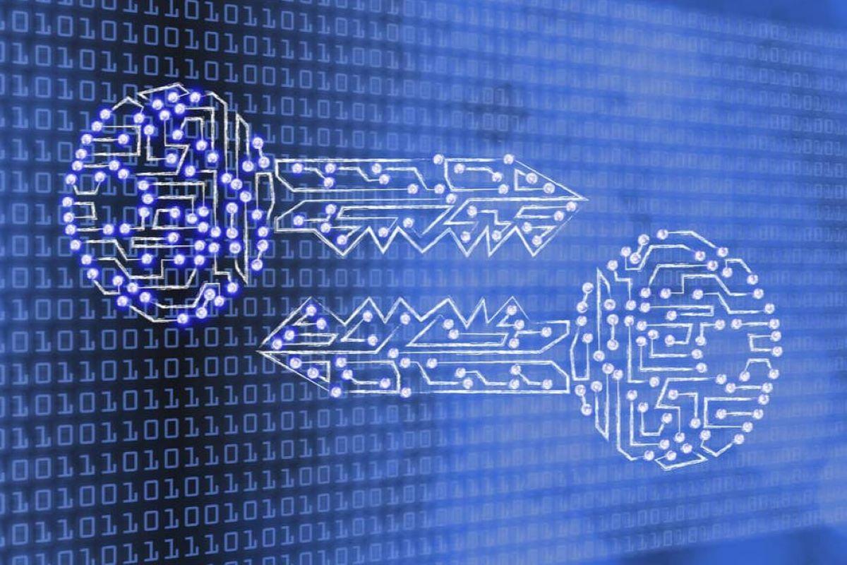12 milhões de dados vazados não devem afetar os clientes, de acordo com a Eduzz