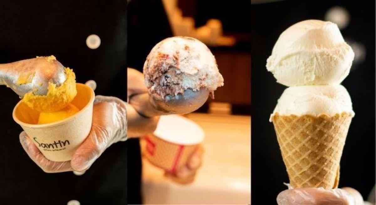 Empresário cria sorvetes com sabores exóticos da Mata Atlântica